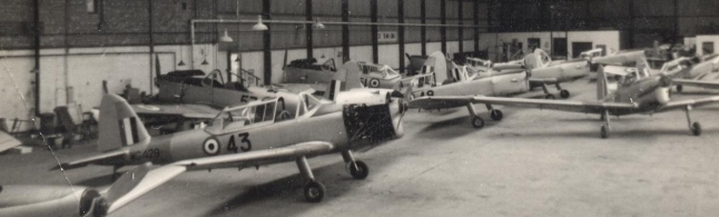 13-chipmunks-in-hanger-wg-429-435148-53-or-57-45-eric-gayton-e1529768756482.jpg